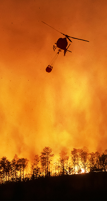 Forest fire suppression